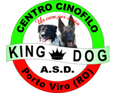 A.S.D. KING DOG
